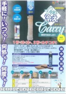 瞬間冷却剤「ぷしゅ冷えCarry」