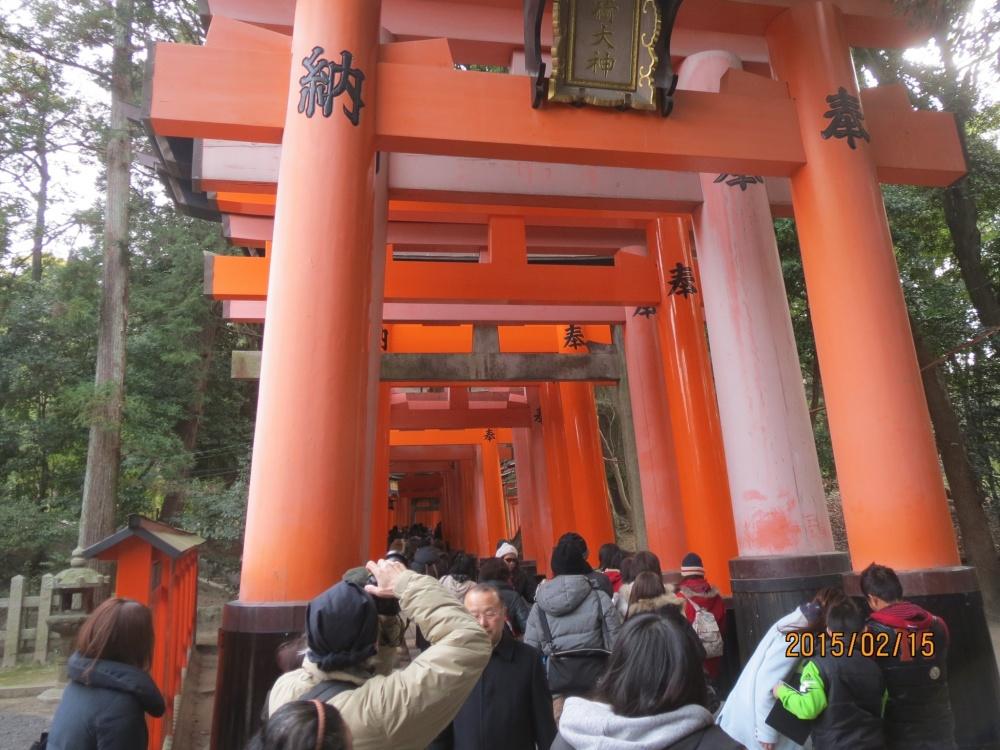 伏見稲荷神社の鳥居です。綺麗ですね。